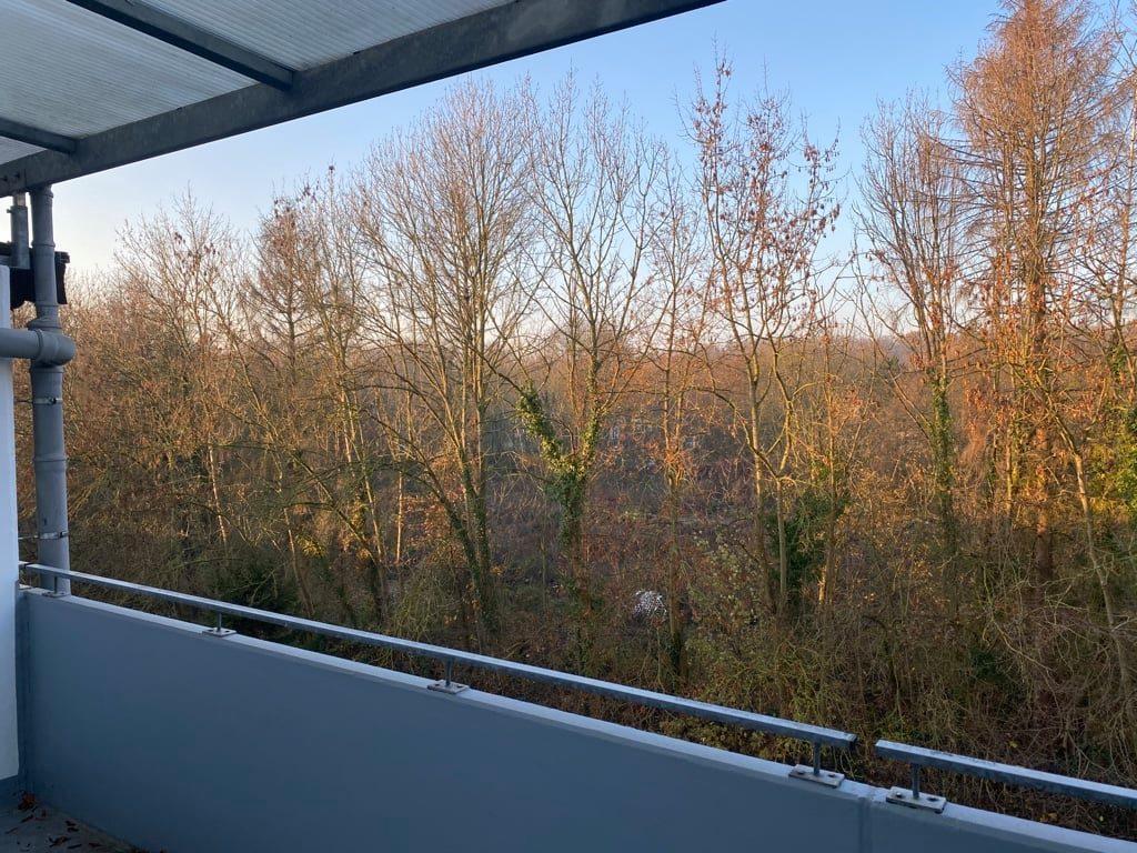 Maute-Unternehmensgruppe-1Zimmer-Whg-Horrem-Balkon